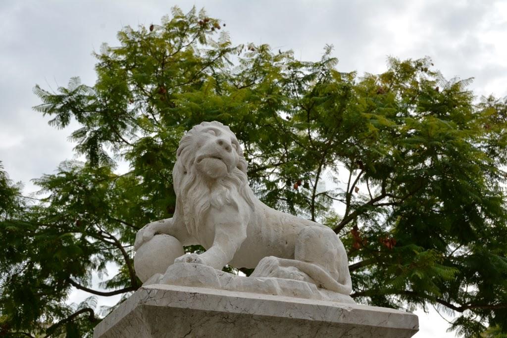 Malaga Lion