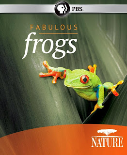 Watch Nature Fabulous Frogs (2014) movie free online