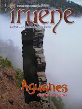 Revista IRUENE nº 4