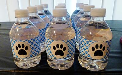 water bottles, puppy