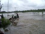 Foto foto Sebagian Wilayah Muarojambi Tenggelam