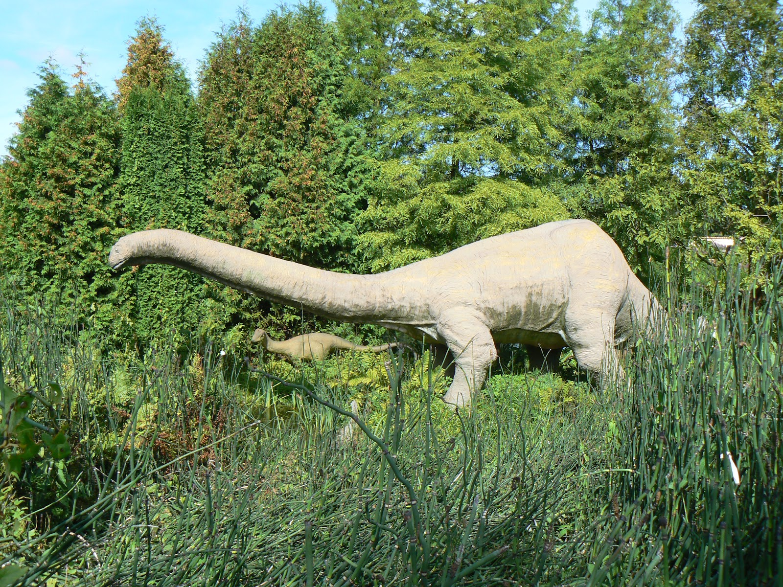 Apatosaurus Wallpapers | Fun Animals Wiki, Videos ...