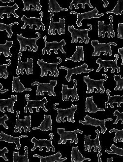 Black Cat Background Tumblr #Descompl!c@#: Backgro...