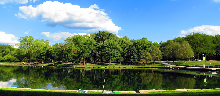 Lincoln park commons pond news kettering ohio for Koi pond kettering
