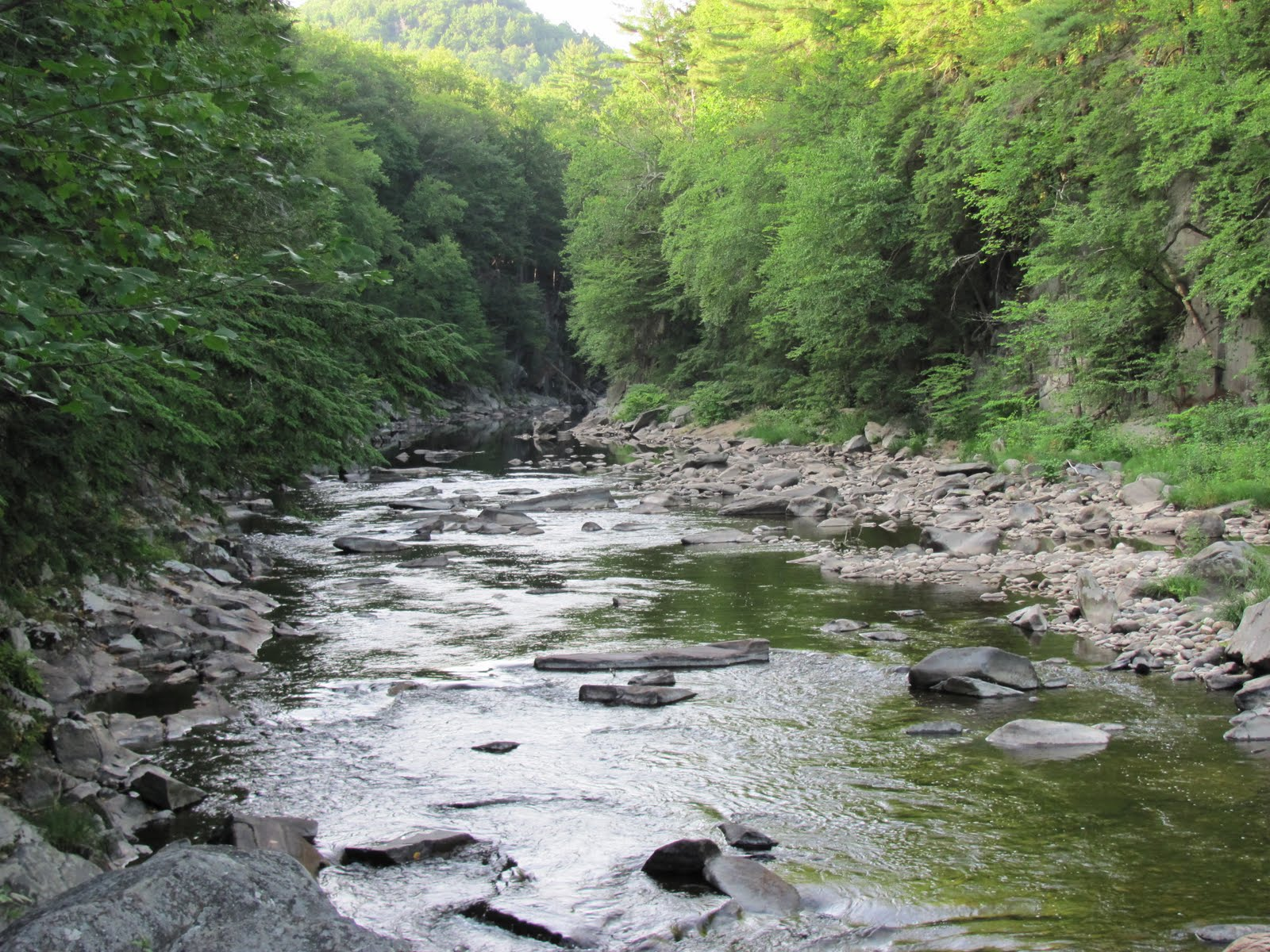 Millers swift ware and eb fly fishing forum welcome to for Fly fishing massachusetts