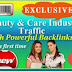 Beauty and Care Industry web traffic Package