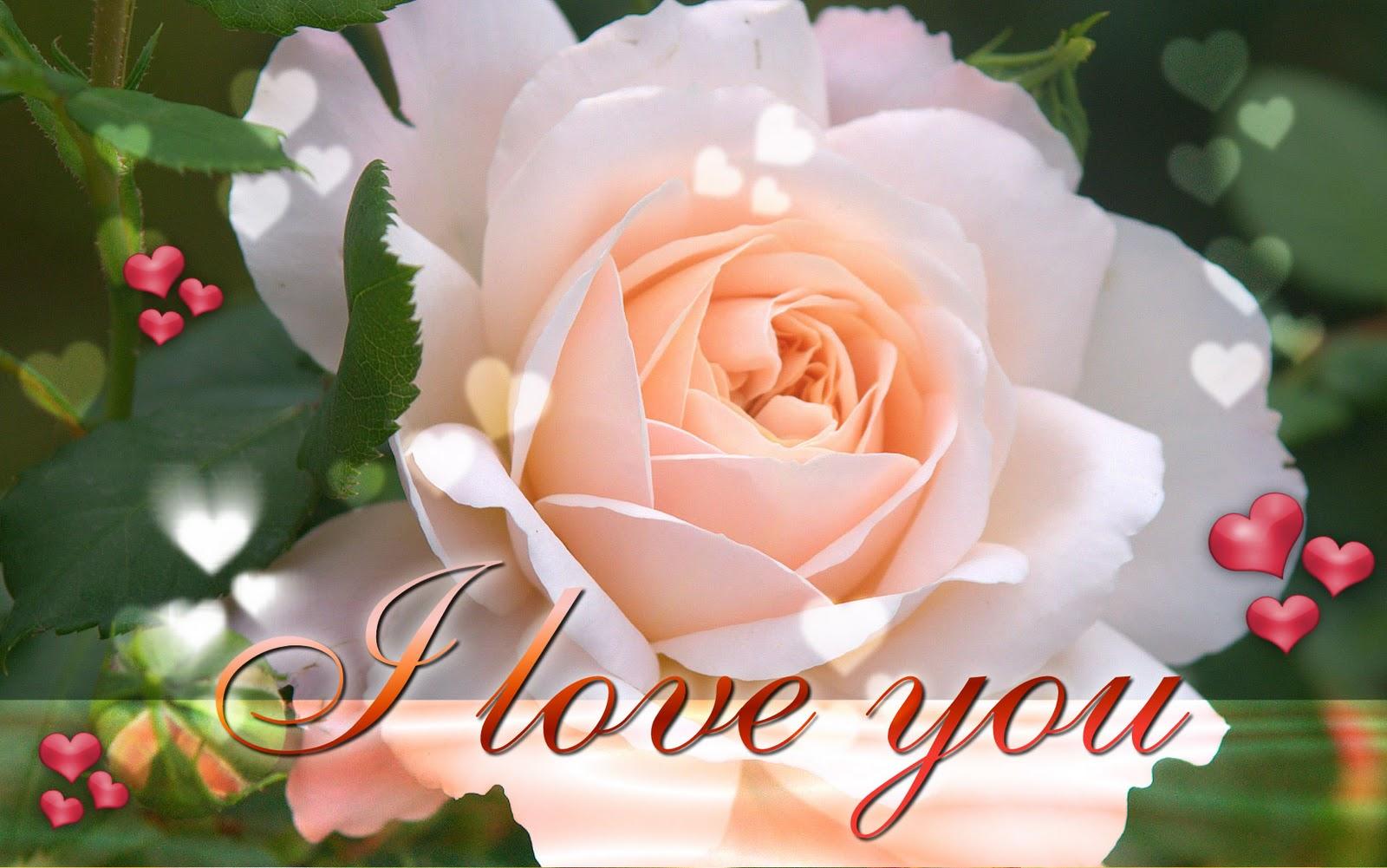 http://2.bp.blogspot.com/-WXzz83-pPN0/TttUCTjAUCI/AAAAAAAABMM/yiXQNCoEi7s/s1600/i-love-you-ecard-wallpaper.jpg