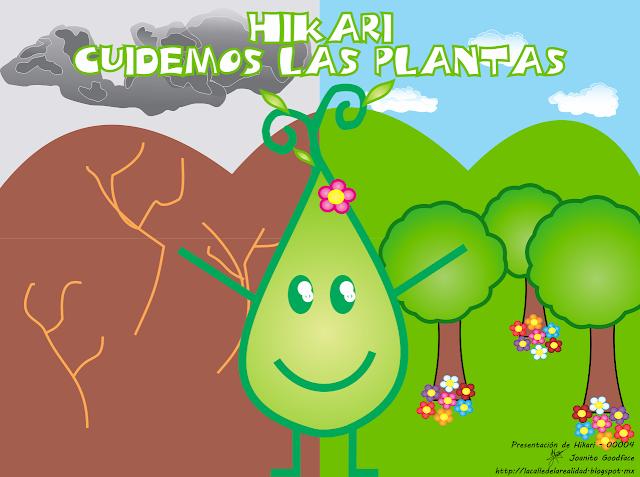 Lemas Sobre Cuidado De Las Plantas   MEJOR CONJUNTO DE FRASES