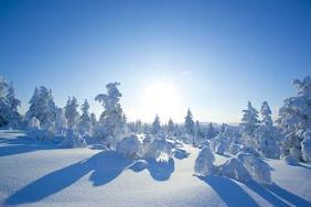 Зимушка-зима!!!