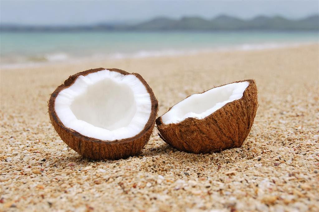 Propiedades Aceite Coco Natural