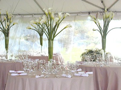 Outdoor Wedding Decoration Ideas On A Budget