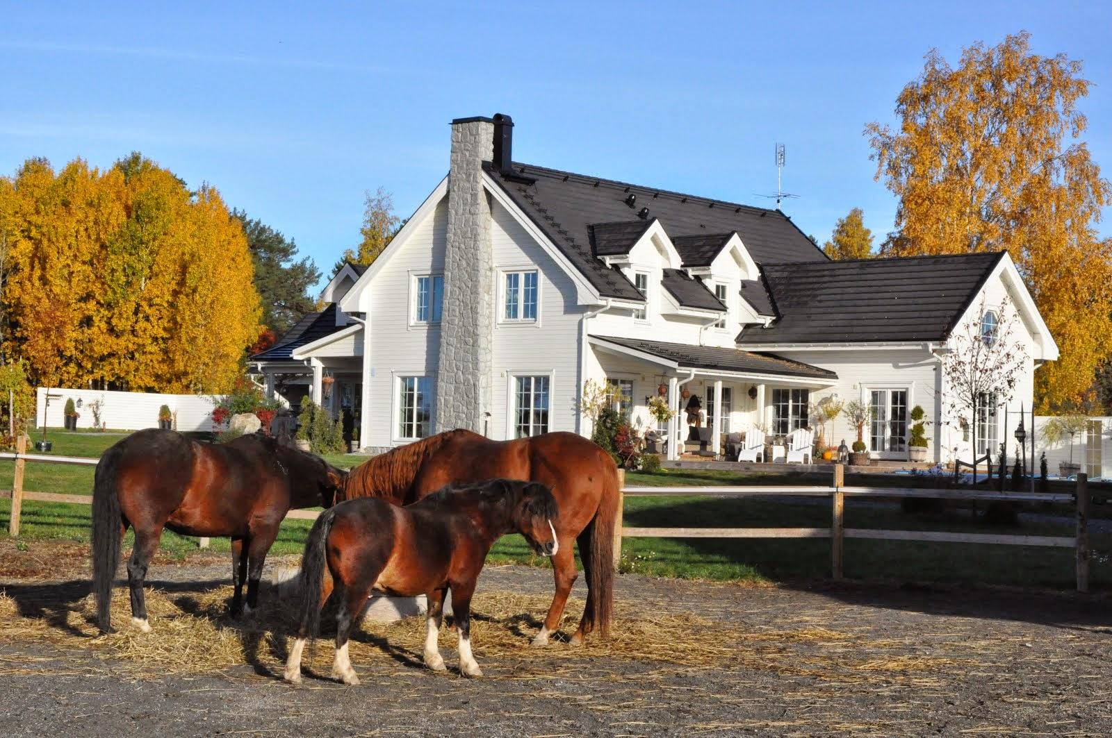 Hästhagen framför huset