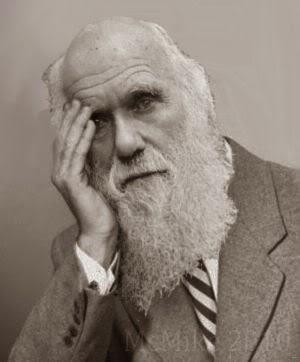 Charlie Darwin facepalm