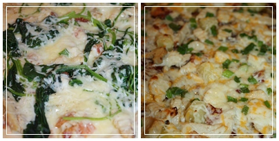 ... Chicken Spinach Alfredo is on the left. The Maui Wowie is on the right