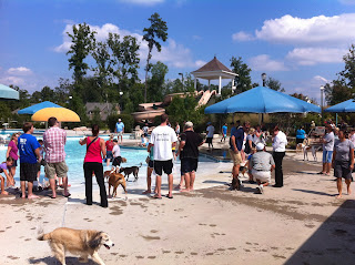 "Annual Briar Chapel ""Pups in the Pool"" Event a Huge Success"