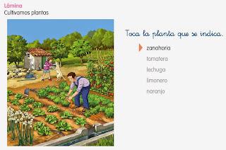 http://www.ceiploreto.es/sugerencias/cp.juan.de.la.cosa/1_2/cono/actividades/08/01/visor.html