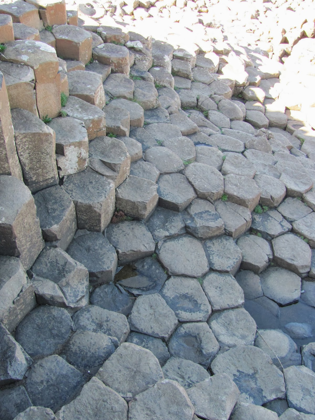 Giant's Causeway stones close up