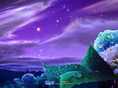 O Universo conspira a nosso Favor