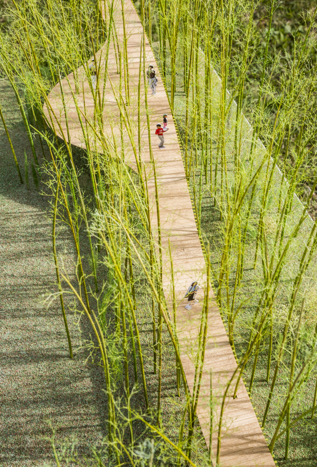 Korean artist Choi Jae-eun, Japanese architect Shigeru Ban seek to build elevated walking trail