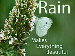 Sms poetry shayari wishes portal barish rainy day sms and wishes barish rainy day sms and wishes for lover m4hsunfo