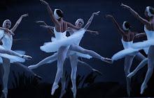 """""""Lago dos Cisnes"""", de Tchaikovsky"""