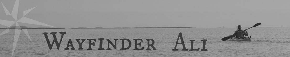 Wayfinder Ali