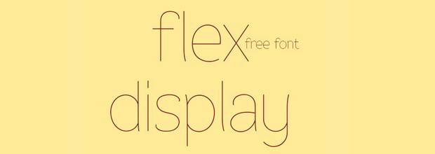Flex display Font