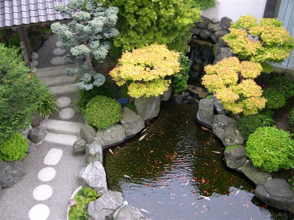 Home garden ponds interior design and deco for Japanese koi pond garden