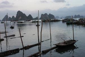 Cái Rồng port, Vân Đồn island