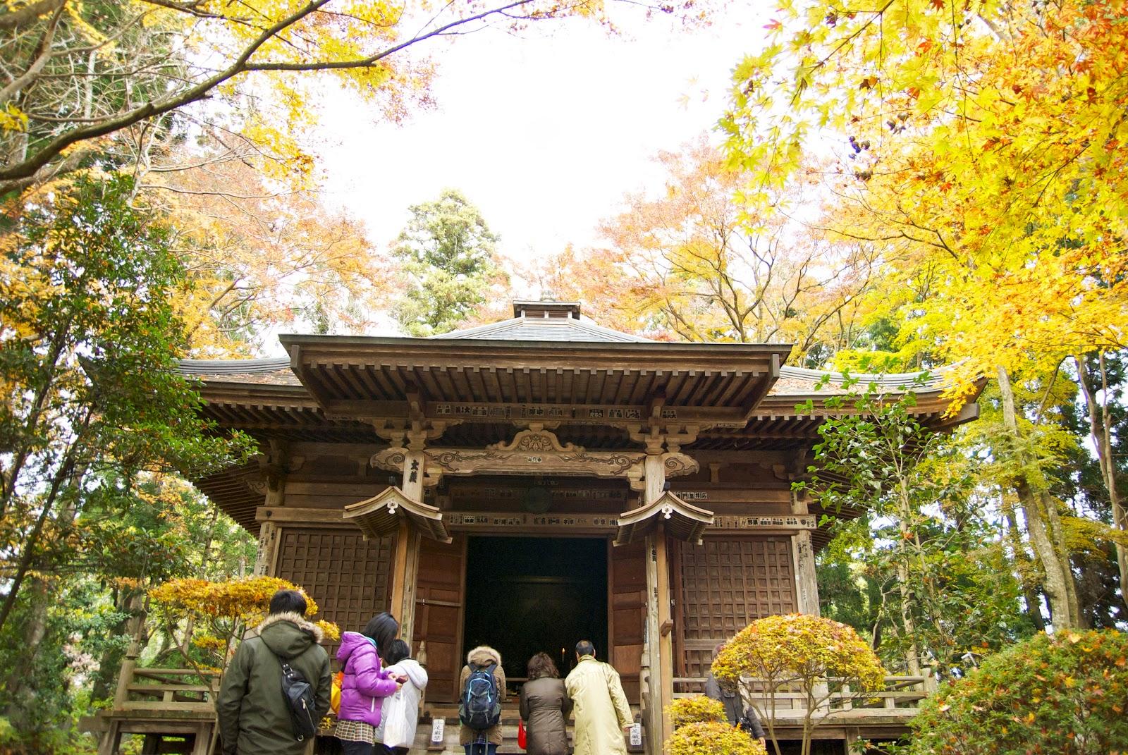 中尊寺の画像 p1_12