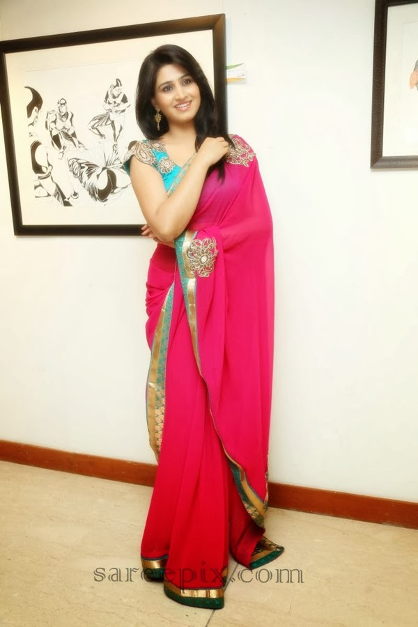 Shamili agarwal in transparent saree
