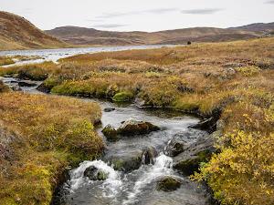 The stream that drained Lake Tasersuatsiaap Qalia