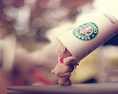 Starbuck's.