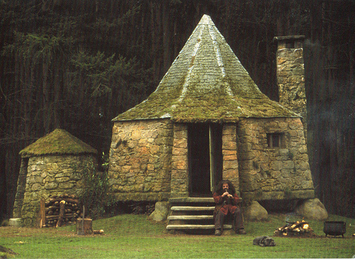 Moon To Moon Moon To Moon Loves: what house was hagrid in