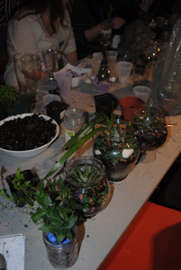 Xpace diy terrarium sand art xpace held a do it yourself terrarium and sand art workshop this past month check check check it out solutioingenieria Choice Image