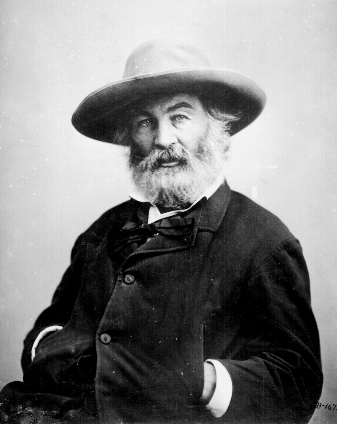 walt whitman style of writing