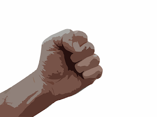 "Another silly idea is that the human hand evolved for the *reason* of making a fist to punch out opponents. Yes, really! No evidence for the how or why, of course. Also, comments on Pluto, and a link to Doug McBurnery's podcast, ""The Weekly Worldview""."