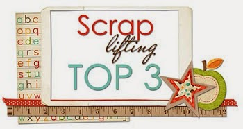 Top 3 @ scrap lifting  Blog March 2014 and April 2014