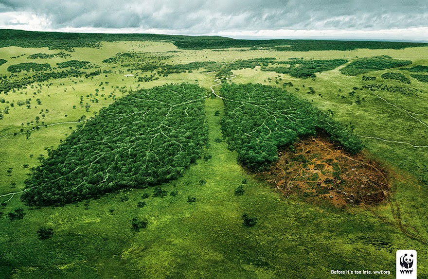 40 Of The Most Powerful Social Issue Ads That'll Make You Stop And Think - Deforestation And The Air We Breathe: Before It's Too Late