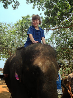 "<a href=""http://vionm.com/"">Thailand</a> <a href=""http://vionm.com/things-to-do-in-bangkok-thailand/thailandhoneymoon-explore-the-beauty-of-koh-samui/"">Beach</a>: Elephant Mahouts For A Day"