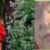 Yüz Felci Bitkisel Tedavisi