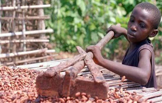 Rahsia Bagaimana Coklat Hershey, Nestle dan Mars Dihasilkan Terbongkar