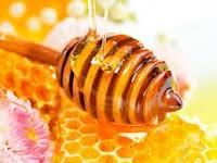 khasiat madu bagi kersehatan