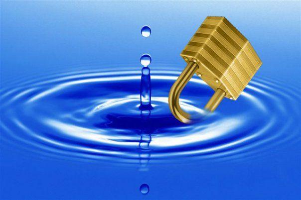 Quaeram la guerra del futuro quella per l 39 acqua - Moscerini in bagno ...