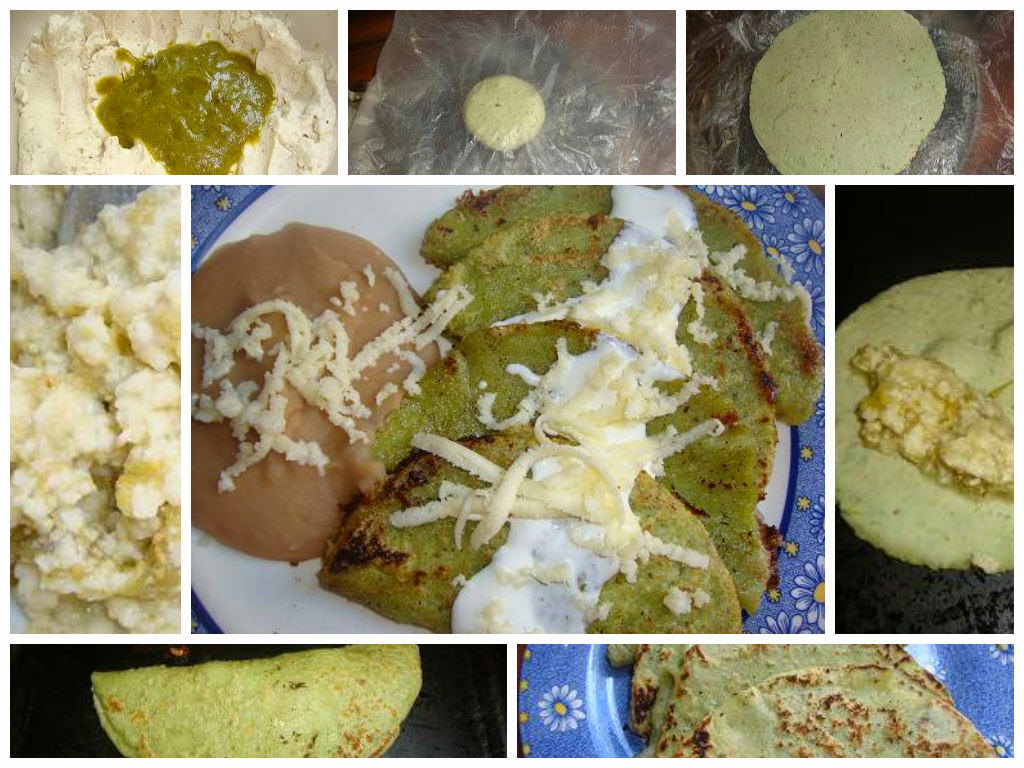 Chocolate molinillo enchiladas potosinas verdes for Tipos de encielados