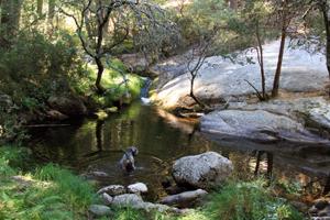Casa rural con encanto en pedraza segovia de pino a pino for Navafria piscinas naturales