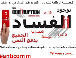 التدوين ضد الفساد في موريتانيا