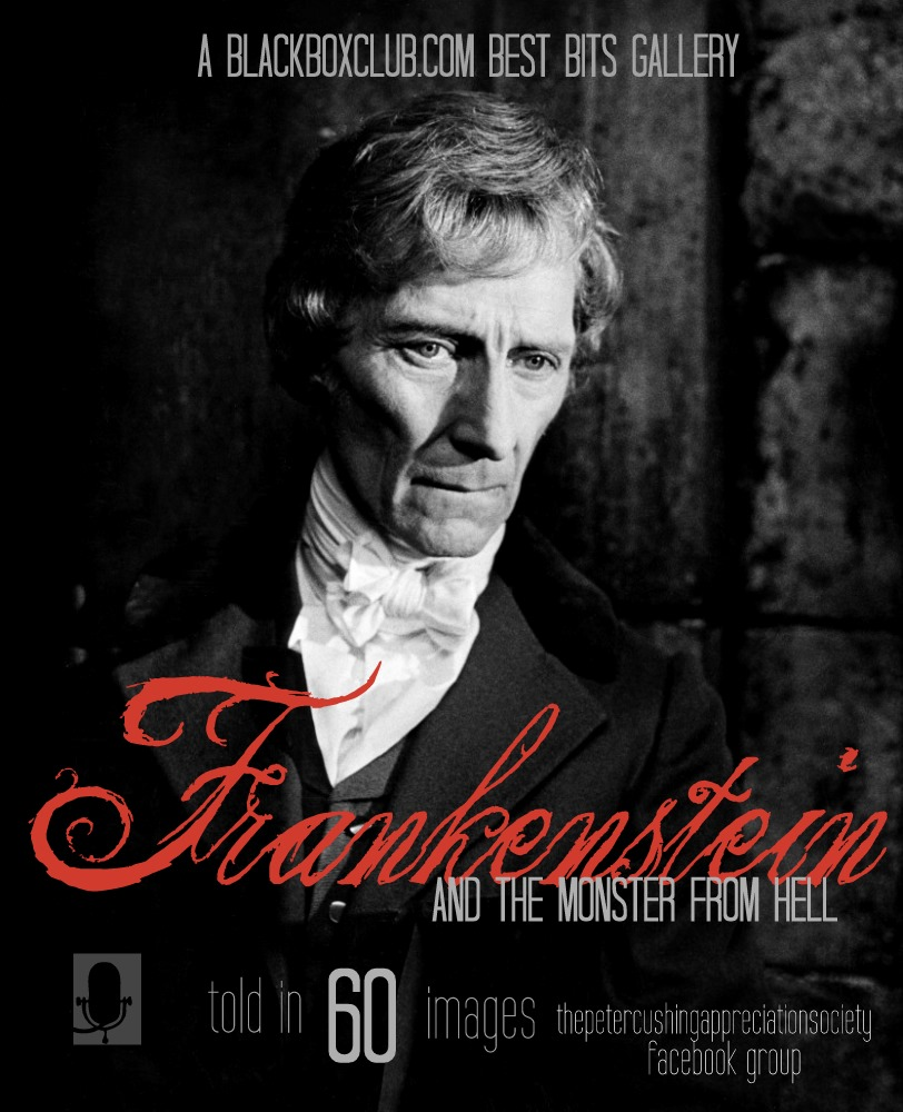 understanding the frankenstein monster Recommended citation melnick, alexandra (2017) knowledge is knowing frankenstein isn't the monster, wisdom is knowing frankenstein is the monster: an exploration on mankind and.