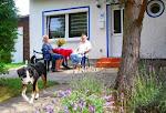 Katz und Hund Ferienhaus...