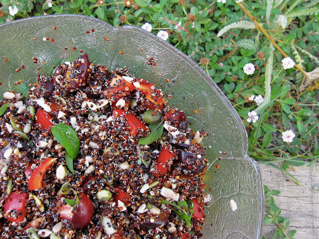 salade quinoa noir poivron prunes menthe